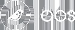 Birdzeye Logo